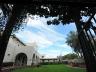 exterior-grapevinegarden