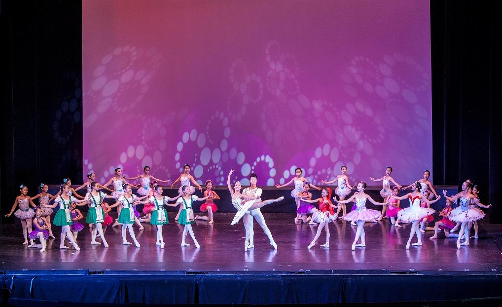 Li's Ballet Sleeping Beauty